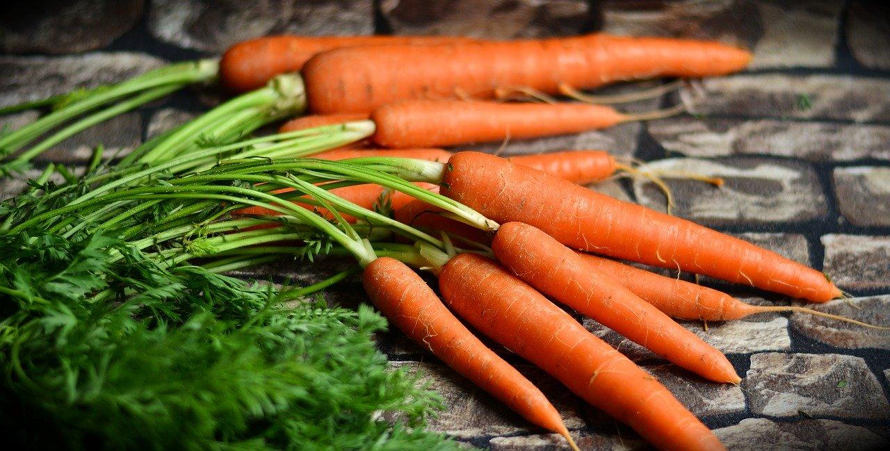 आँखों की रौशनी के अलावा भी कई मर्जों की एक दवा है गाजर